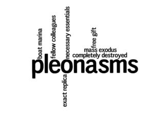 Examples of pleonasms